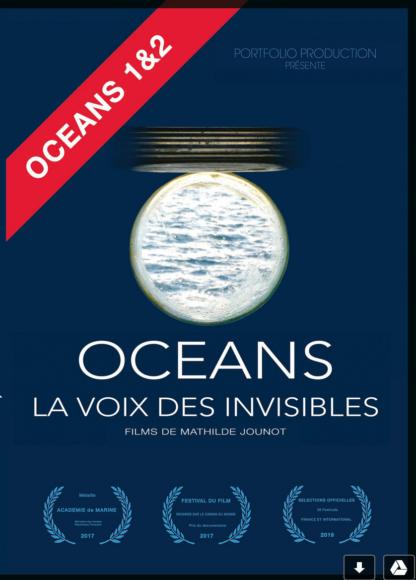 Océans 2, la voix des invisibles